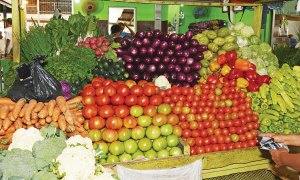 productos agropecuarios aumentos precios 300x180 Ajo, plátano y habichuelas, entre los bienes que incrementaron su costo