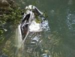 accidente 2 150x115 Nuevos detalles del fatal accidente en Puerto Plata