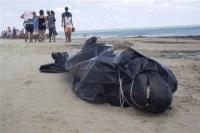Cabarete 200x133 Hallan un delfín muerto en playa Cabarete