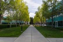 Google Mountain View Campus