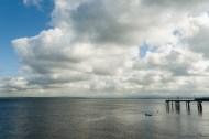大约早上 10 点不到来到 Mukilteo 码头,刚好错过上一班轮渡。清早乍寒,水里居然有人嬉戏!