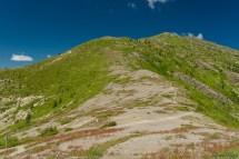 左下角有一个路标,trail 在此分叉,沿着远方的路走向北是一个更难的 trail。