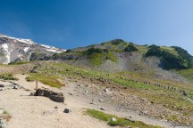 我们分到 Skyline Trail 的一个分支上,但是登顶的队伍非常有节制的选择了最近路线