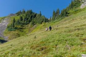 因为 Skyline trail 太远,我们换了更近的 Goden Gate Trail 返回