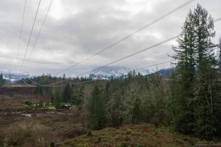 这天天气预报为多云,从车里出来略有凉意(应该是我穿多了),山下不少树木已经光秃秃的了,远处山头依然积雪不少,雾气环绕。据说到 Wallace Lake 的路途上有可能也有雪,于是我很识相的穿了前往 Rainier 的高帮登山鞋,带上了登山杖。