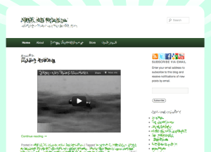 Website design by Moran Media