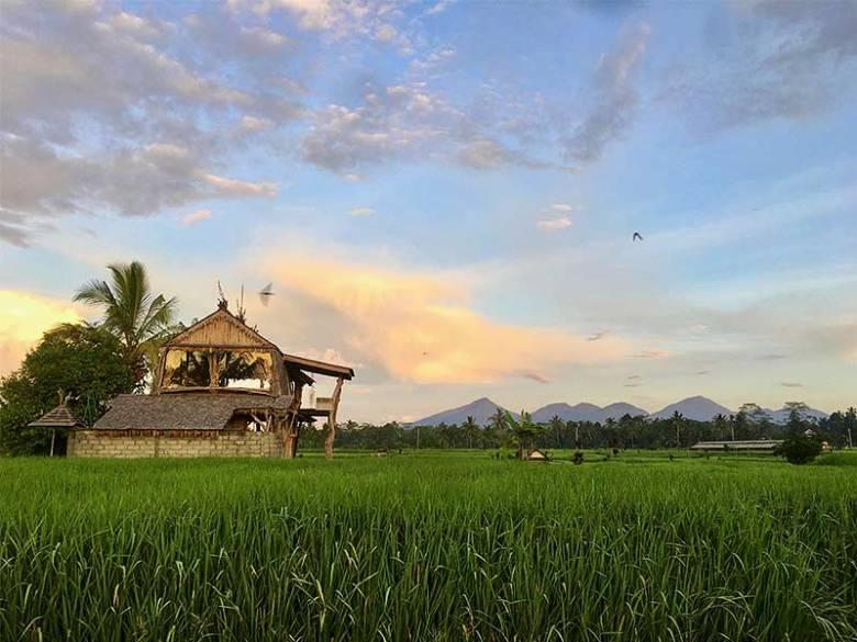 Kintamani sebatu Ubud Bali rice fields