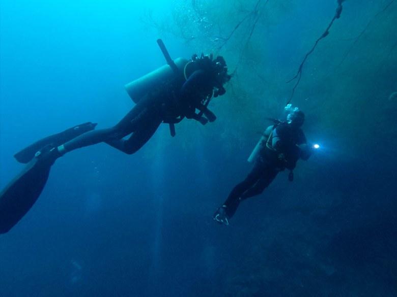 Gunters Wall Diving Padre Burgos