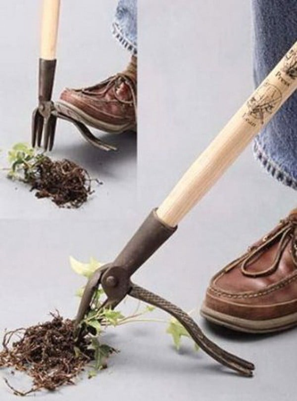 Best Way To Stop Weeds From Growing In A Brick Walkway