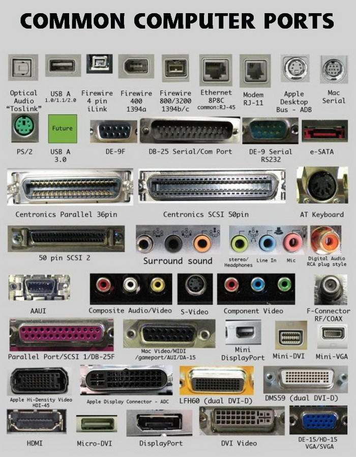 Dell Monitor Connector Types