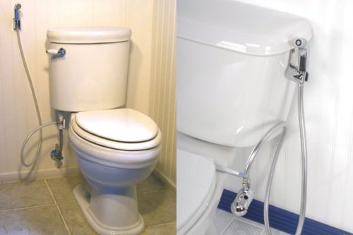 toilet with hygienic shower