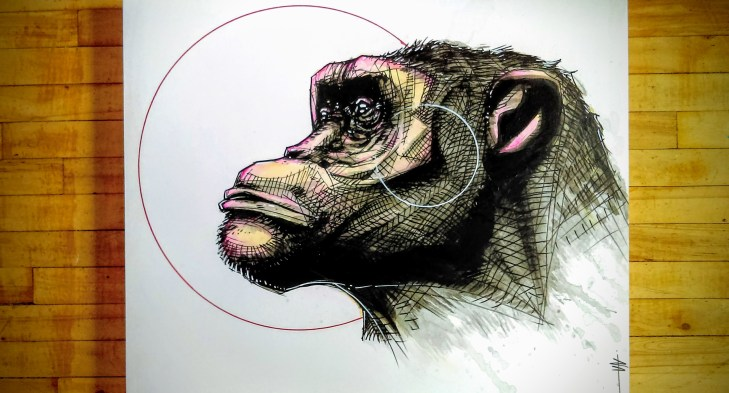 Primate_02_color