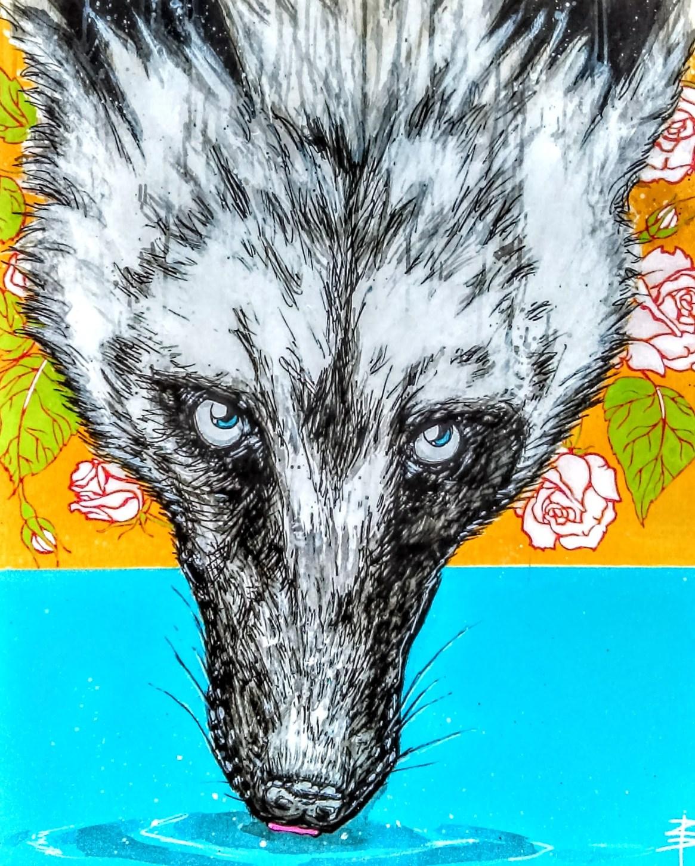 drinkingwolf