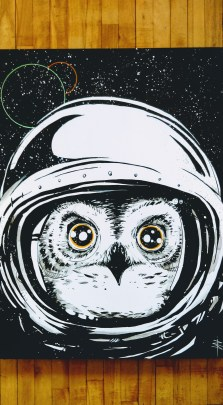 space-owl02