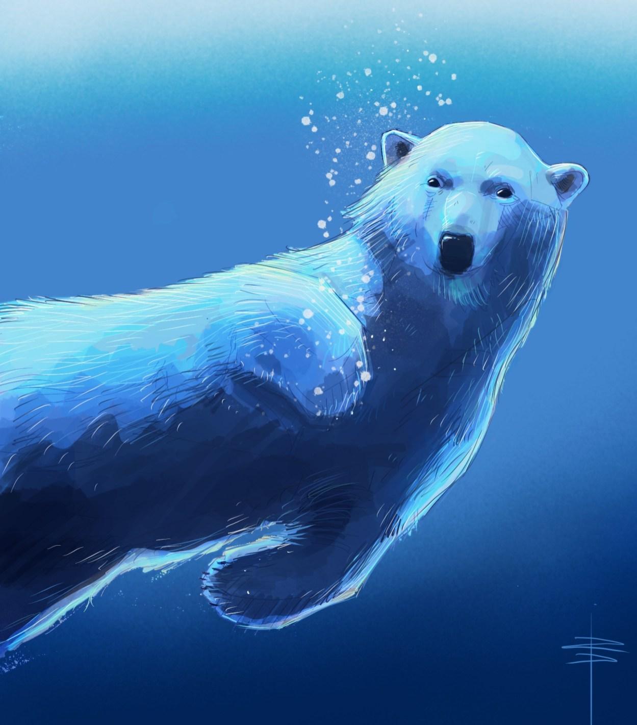 procreate-bear