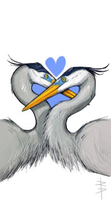 procreate-heron-love