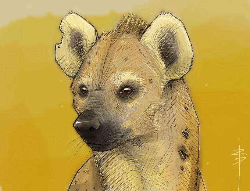 procreate-hyene