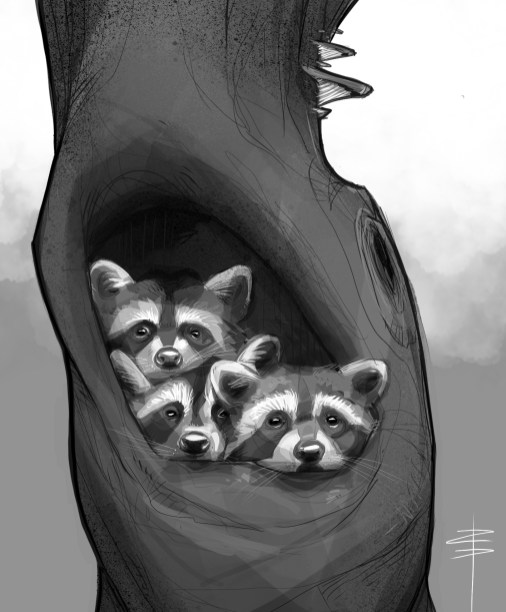 procreate-raccoons