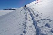 Wunderschöne Spur, heute konfliktfrei genutzt von Ski- und Schneeschuhläufern.