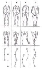 figure-18