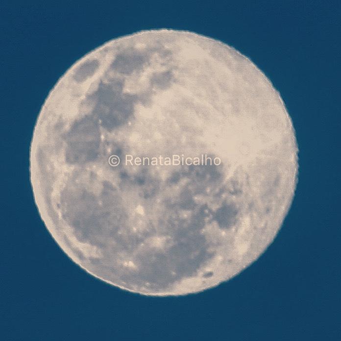Interrompemos a nossa programação normal para apreciar, sem moderação, a lua se acendendo no céu! 🌕💛