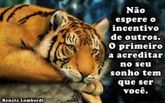 tigre-f7bb32