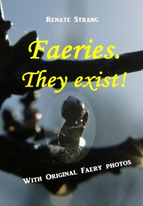 "Cover ""Faeries, They exist"""