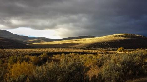 Nevada Gold & Silver II