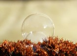 frozen-bubbles-5