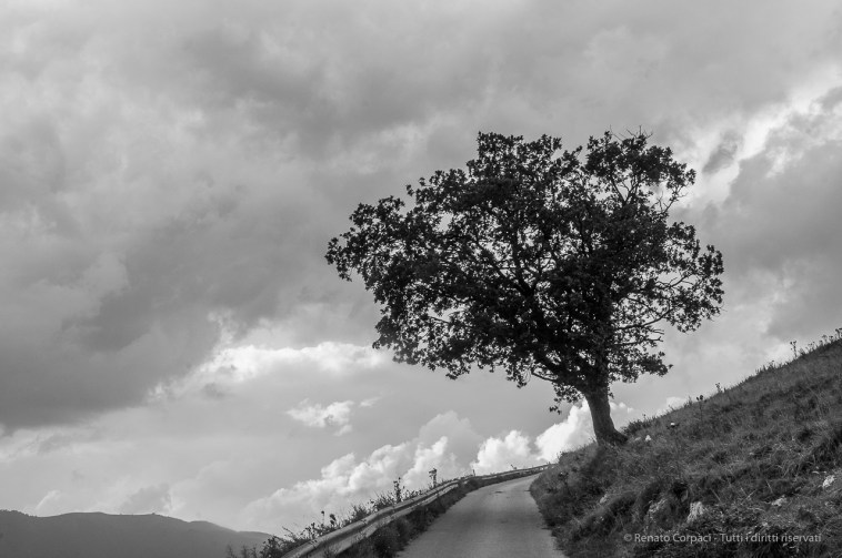 Double horizon. 12 agosto 2014. Monte Cornizzolo - Nikon D300s, 30mm (16-85mm f/3.4-5.6), 1/125sec, ƒ/16 ISO 800