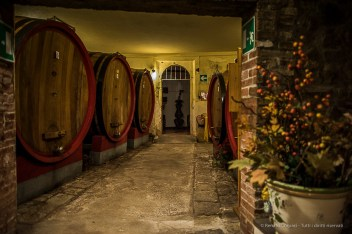 The Cinelli Colombini family, land owners in Montalcino since 1352, has owned the Fattoria dei Barbi winery since the end of the 18th century. Nikon D810, 24mm (24.0mm ƒ/1.4) 1/80 ƒ/1.4 ISO 800