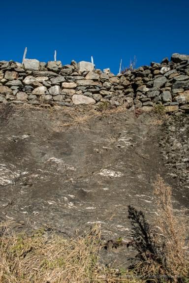 "A vineyard near Teglio, Valtellina. Nikon D810, 24 mm (24,0 mm ƒ/1.4) 1/125"" ƒ/9 ISO100"