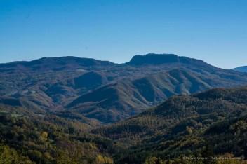 """Foreste Casentinesi. Nikon D810, 85 mm (85.0 mm ƒ/1.4) 1/400"""" ƒ/8 ISO 64"""