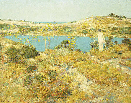 Childe Hassam - Dune Pool