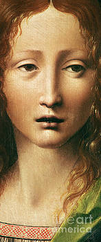 Leonardo Da Vinci - Head of the Savior