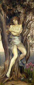 Evelyn De Morgan - The Dryad
