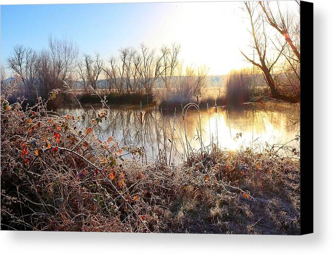 Winter Is Coming Canvas Print featuring the photograph Winter Is Coming by Maria Jansson