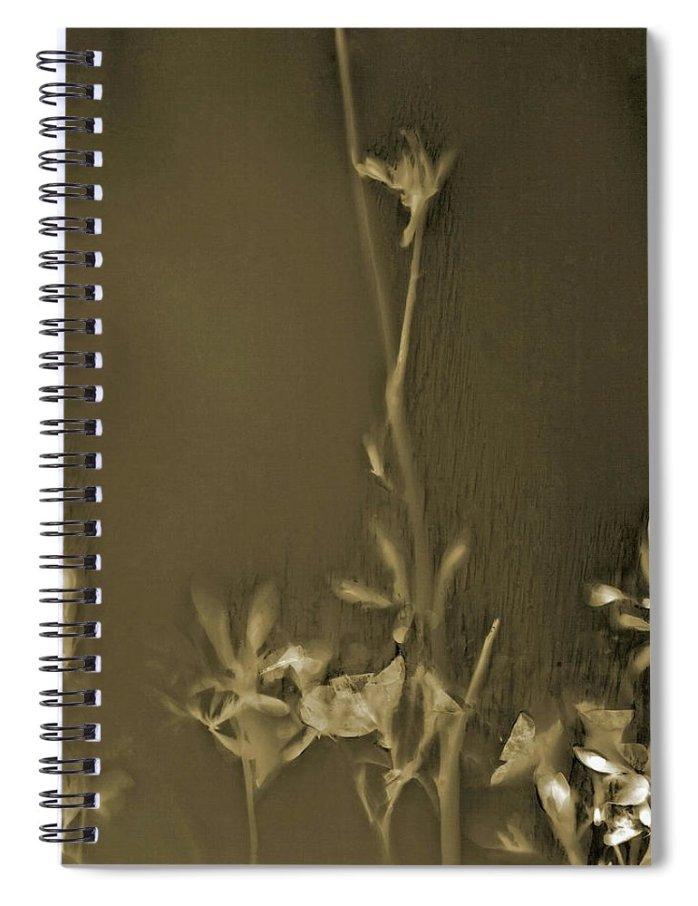 Art Spiral Notebook featuring the photograph Azalea Lumen by Holly Morris
