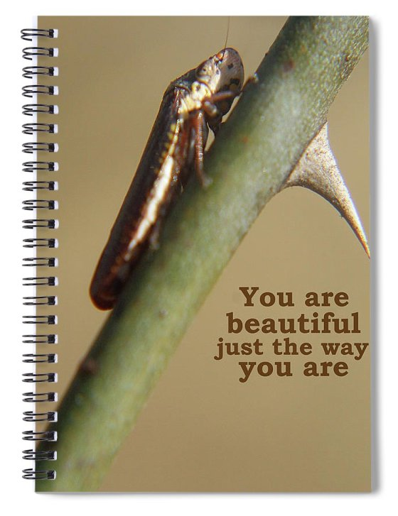 Nature Spiral Notebook featuring the photograph You Are Beautiful by Holly Morris