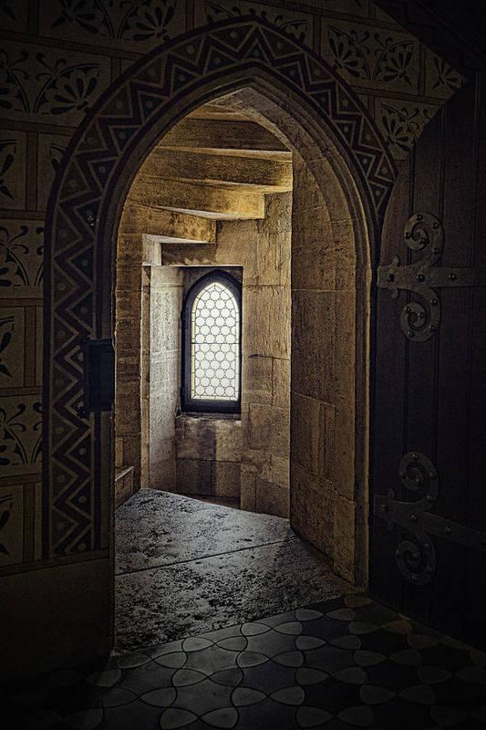 Enter for Enlightenment by Sharon Popek