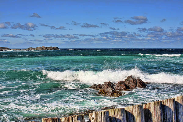 Cape Bonavista Art Print featuring the photograph Cape Bonavista Coastline Fence 4 by Tatiana Travelways