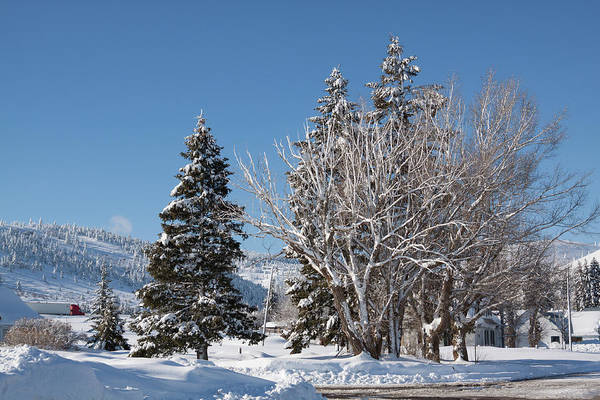 Winter Art Print featuring the photograph Winter Scene In Spencer Idaho by Tatiana Travelways
