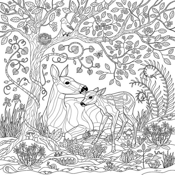 forest coloring page # 6