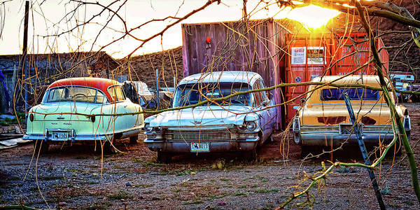 Classic Cars Art Print featuring the photograph Backyard Jewells by Tatiana Travelways