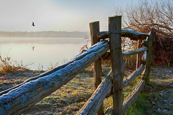 Wooden Fence Art Print featuring the photograph October Morning Frost In Ontario by Tatiana Travelways