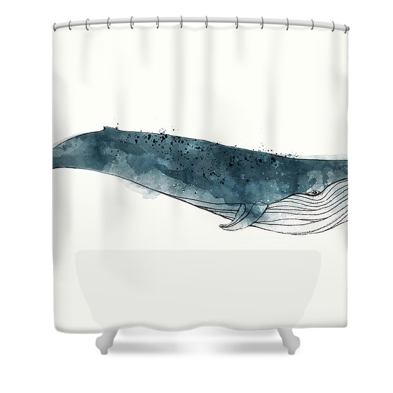 blue whale from whales chart shower curtain