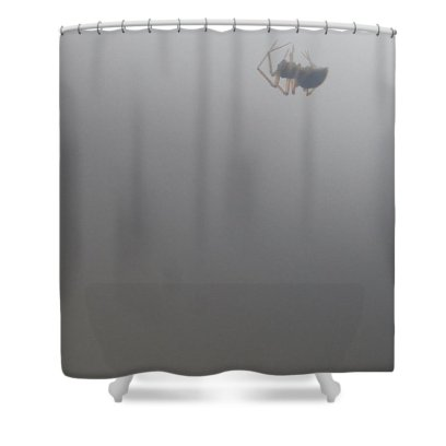 Spider Shower Curtain featuring the photograph Hanging By A Thread by Holly Morris