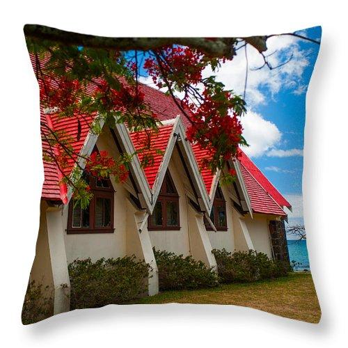 notre dame auxiliatrice mauritius throw pillow