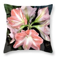 Amaryllis Throw Pillow featuring the photograph Amaryllis Burst by Nancy Ayanna Wyatt