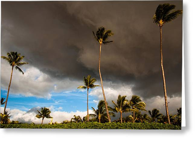 Lahaina Maui Photograph By Michael Keel
